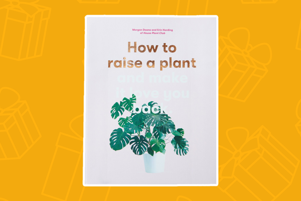 How to raise a plant and make it love you back - kris kringle gift ideas
