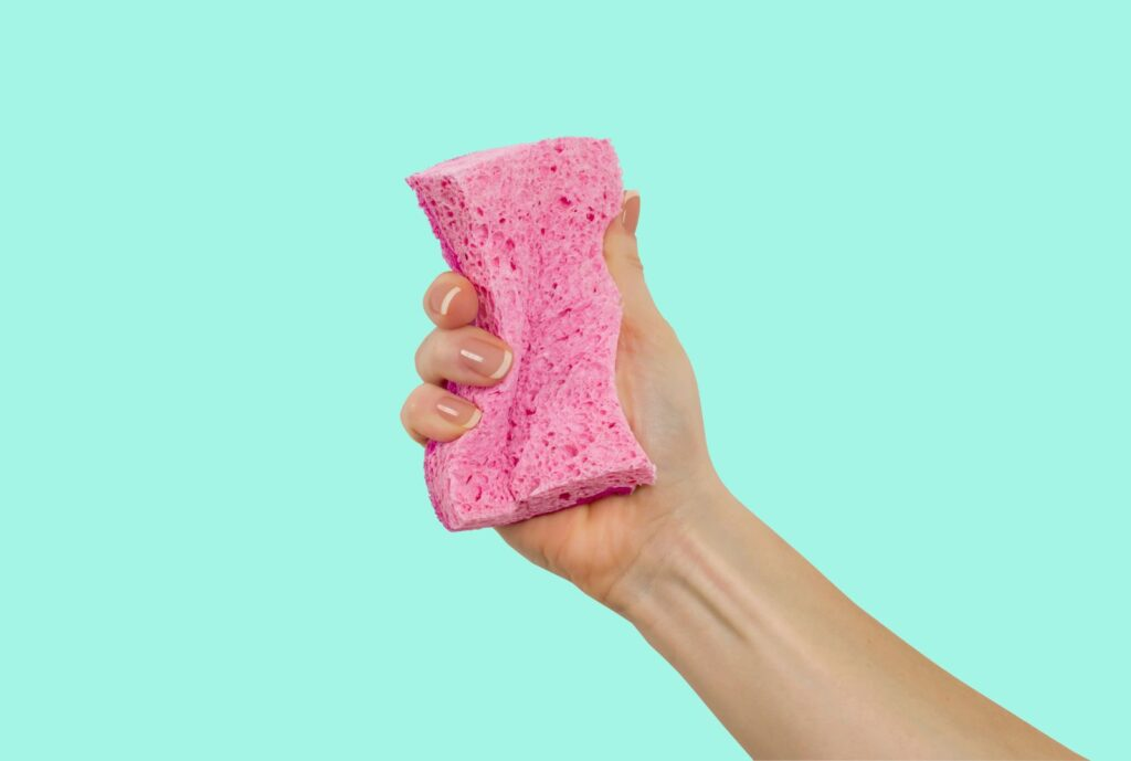 Photograph of pink sponge