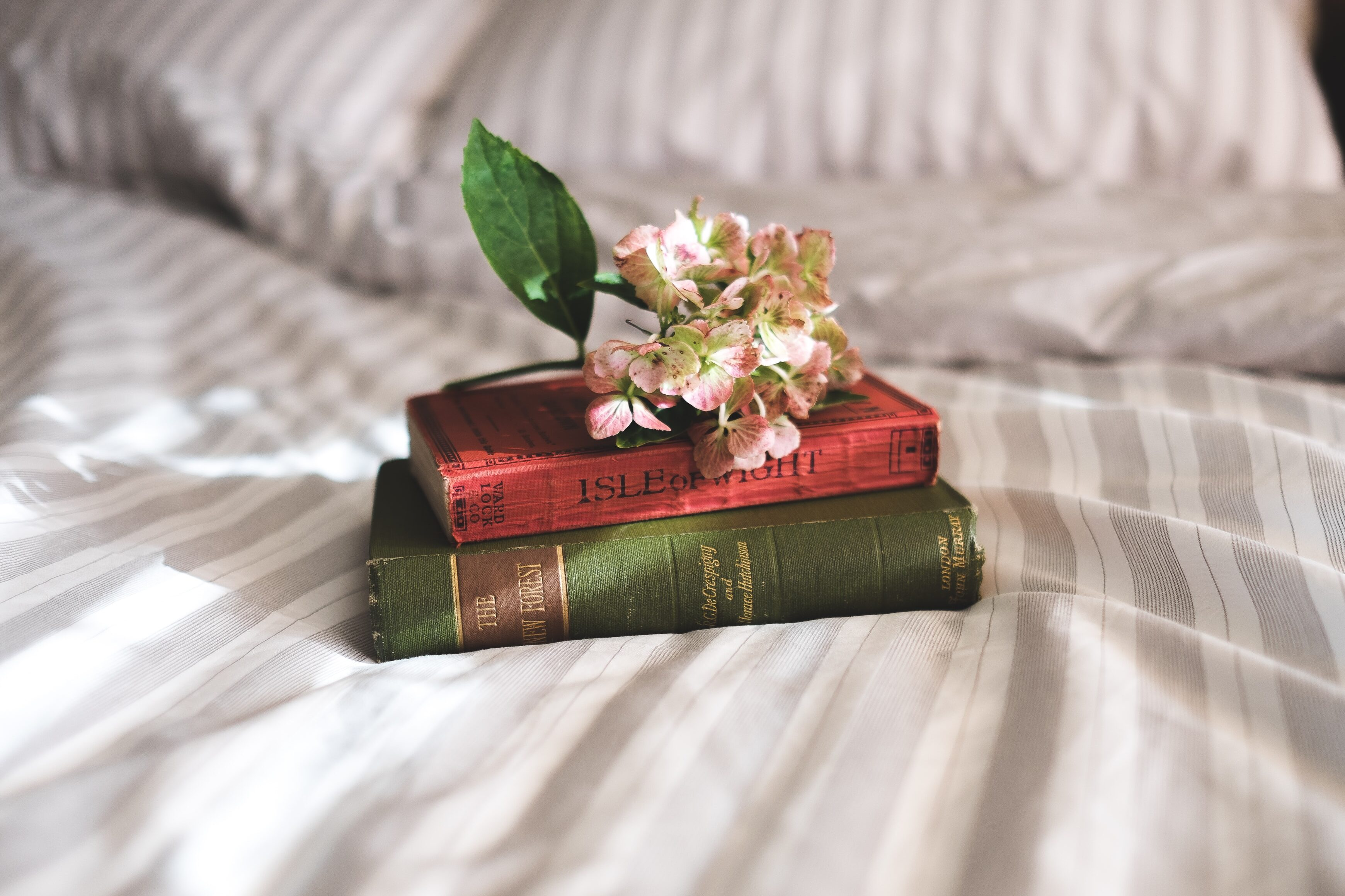 Two old books on a bed
